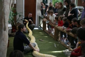 Schools & Groups at the National Reptile Zoo