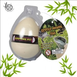 Reptile egg hatching