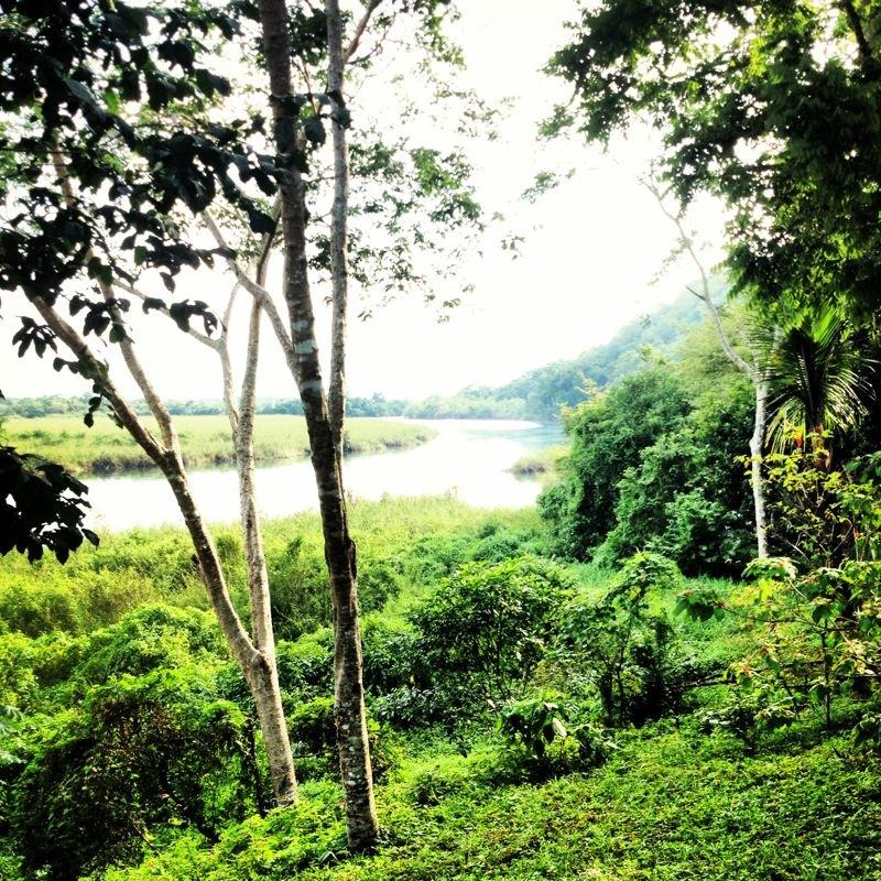 Guatemala View