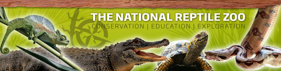 National Reptile Zoo