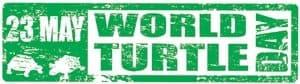 World-Turtle-Day-79661184